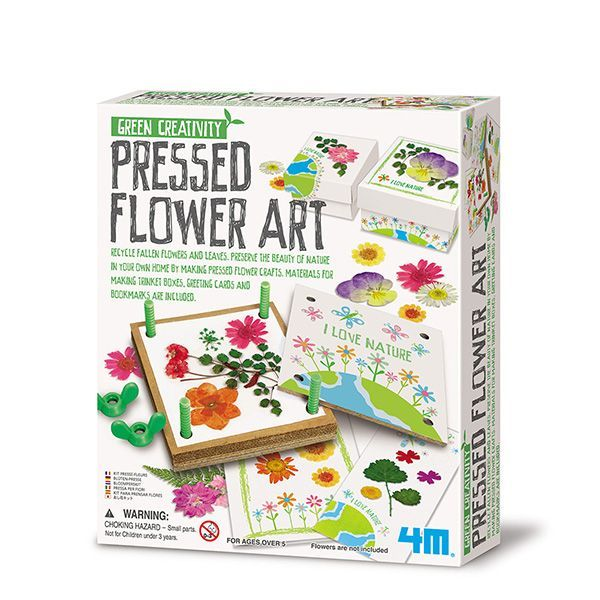 Image of Green Creativity / Pressed Flower Art fra 4M (4M-4567)