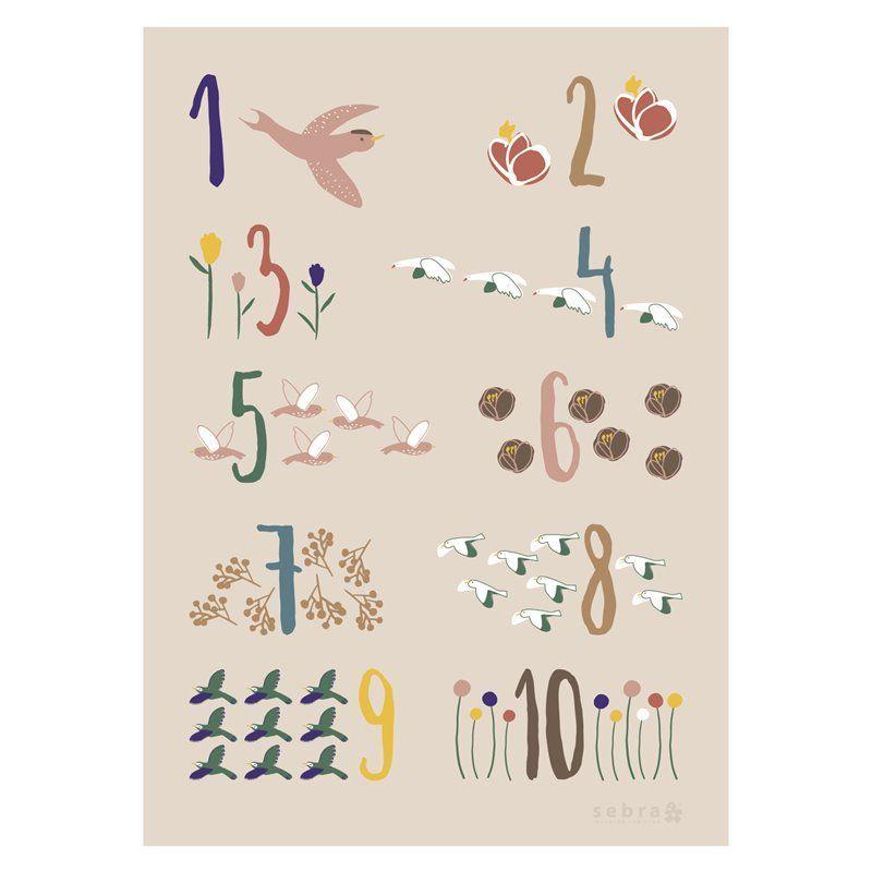 Image of Plakat Fra Sebra - Singing Birds (8003202)